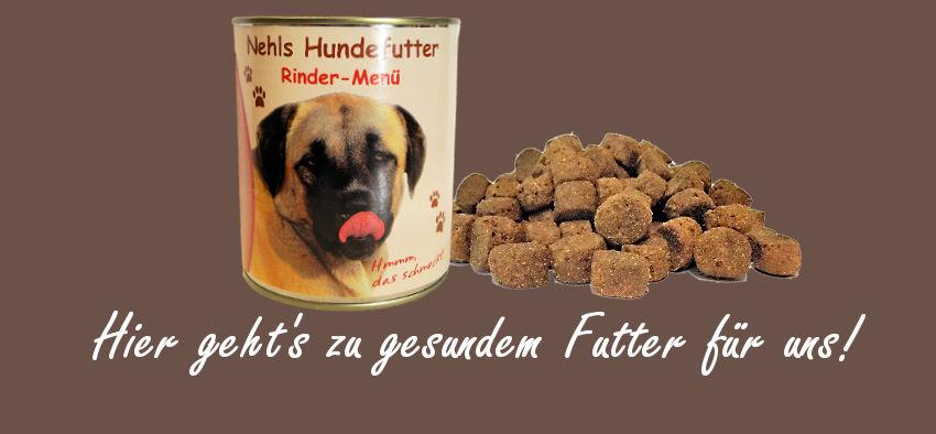 Hundefutter Hunde füttern Hundefütterung