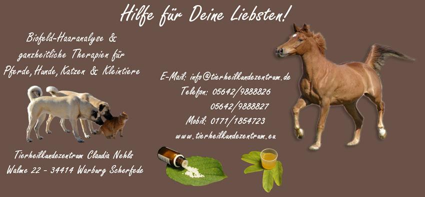 Homöopathie Pferde-Hunde-Katzen-Tiere