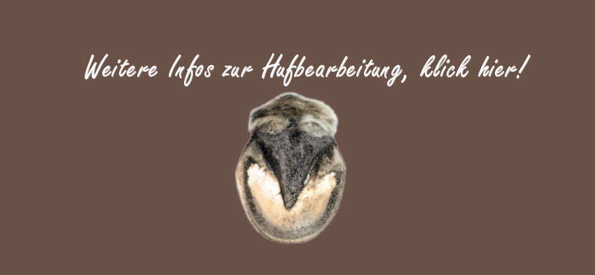 Hufprobleme