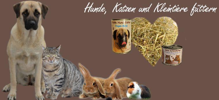 Hunde, Katzen, Kleintiere füttern