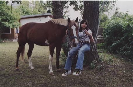 erfahrungen pferde tierheilpraxis
