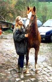 Tierheilkundezentrum Claudia Nehls