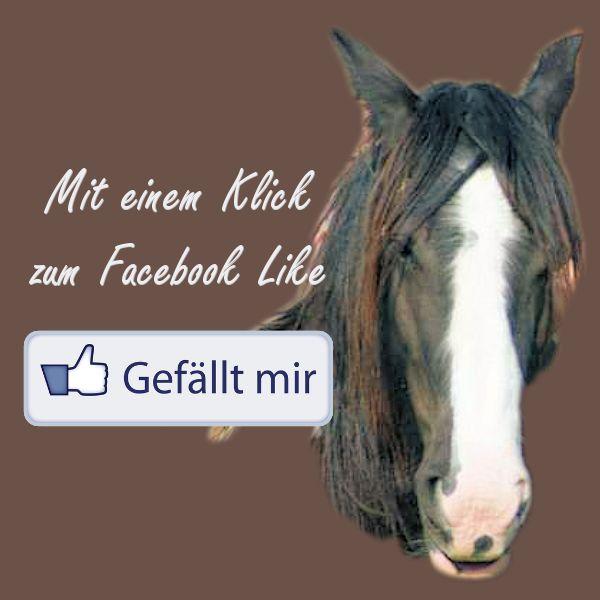 Pferde in Not-Pferdeschutz-Pferdefleisch