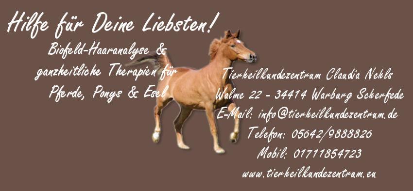 Biofeld-Haaranalyse Pferd