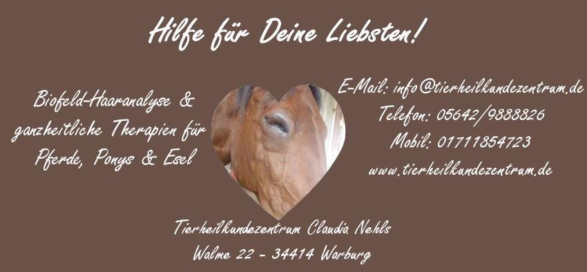 Futtermittelallergie bei Pferden