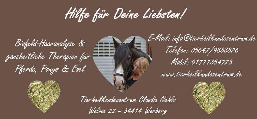 Pferdefütterung-Futterberatung