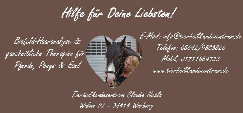 Wohlstandskrankheiten unserer Pferde & Ponys