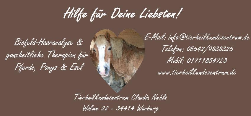 Stoffwechsel & Hautstoffwechsel bei Pferden