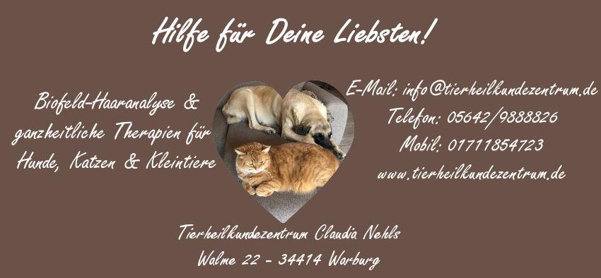 Nieren, Leber, Niereninsuffizienz, erhöhte Leberwerte bei Hunden, Katzen & Kleintieren